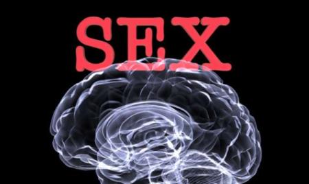 sexandbrain